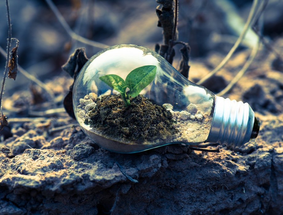 Environmental tech – a better future or a dead end?